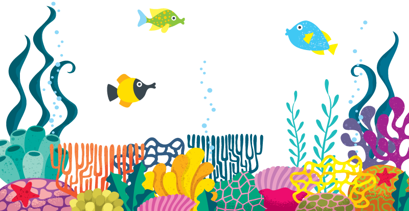 sea-weed-coral-fish.png